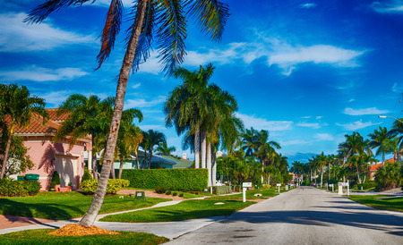 Beautiful street of Floirda with palms and homes. Standard-Bild