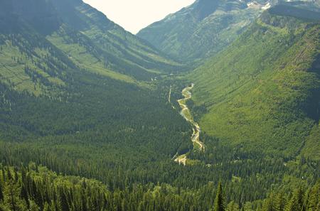 Vegetation of Glacier National Park, United States 版權商用圖片