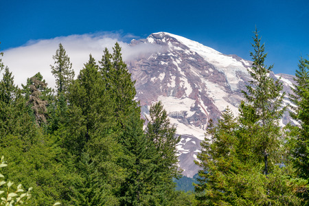 Majesty of Mount Rainier in summer time. Stock Photo