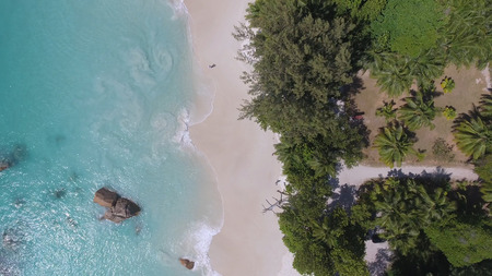 Overhead aerial view of beauiful tropical beach with stones and trees. Banque d'images