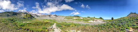 Mount Rainier National Park, Washington. Panoramic view in summer season. Banque d'images