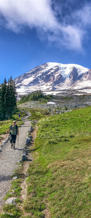 MT RAINIER, WA - AUGUST 17, 2017: Tourists enjoy mountain panorama. This is a major attraction in Washington State..