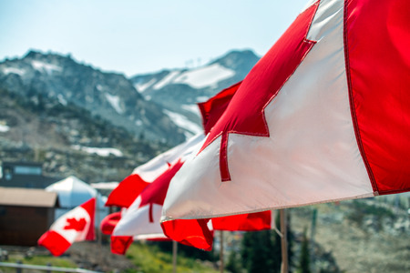 Canada flags waving at the wind in mountain scenario.