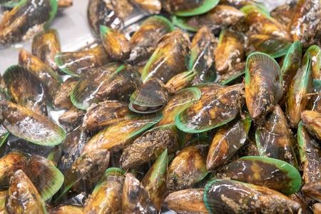 New Zealand Mussels.