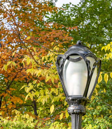 Lamppost in Central Park in foliage season.