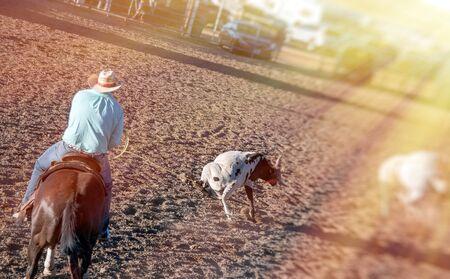 Rodeo scene in Utah, USA.