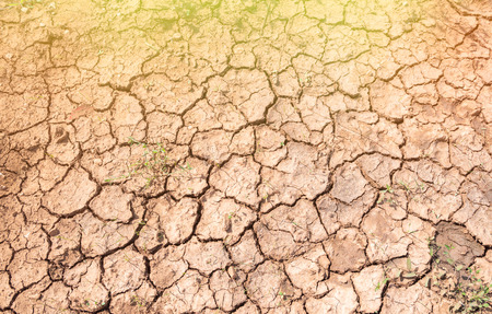 Cracks in the dry soil, drought concept. 스톡 콘텐츠