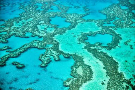 Natural Great Barrier Reef in Queensland. Aerial view of nature paradise with magnificent colors. Фото со стока