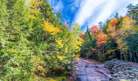 Red, green and yellow trees of New England with creek in October. Foliage season, USA. Banco de Imagens