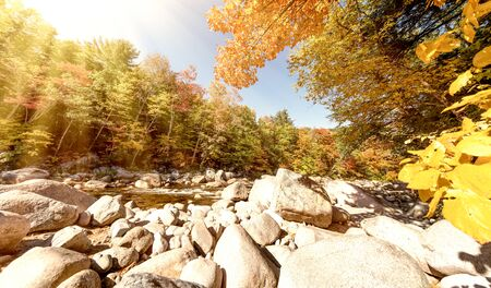 Foliage in Lower Falls, New Hampshire in October Stok Fotoğraf