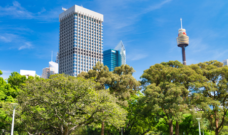 SYDNEY - NOVEMBER 10, 2015: Panoramic view of Hyde Park with tourists on a sunny day. Sydney attracts 20 millions people every year.