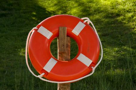 Bia Lifeguards