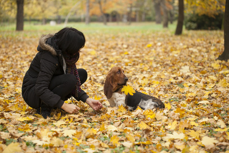 The woman with a dog in the park, Selective focus and small depth of field, lens flare Stock Photo