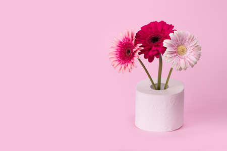 Gerbera flowers in vase made of toilet paper on pastel pink background. Minimal funny spring or summer floral concept. Humorous Art concept of nature, Birthday,  Valentines, Women's, Wedding Day. Copy space Standard-Bild