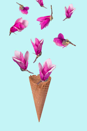 Ice cream cone with flying magnolia flowers on a pastel blue background. Minimal spring or summer concept. A modern fun concept of gifts, anniversary and love with floating flowers.