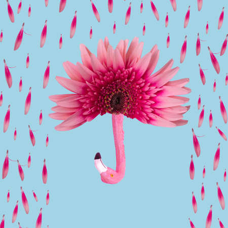 Fun minimal idea made of gerbera flower, petals and exotic flamingo birds on a pastel blue background. Creative Rainy season concept. Standard-Bild