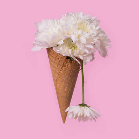 Ice cream cone with white flowers and dripping effect on a pastel pink background. Minimal spring or summer concept. A modern fun concept of gifts, anniversary and love. Standard-Bild
