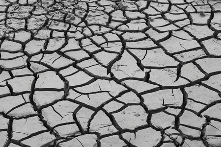 A dry cracked field texture