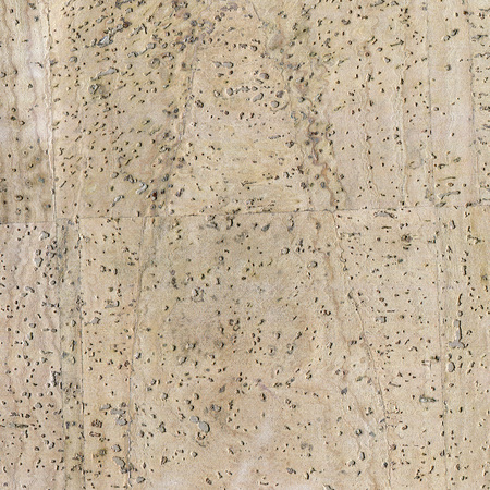 high detailed cork board texture, close up Stock fotó