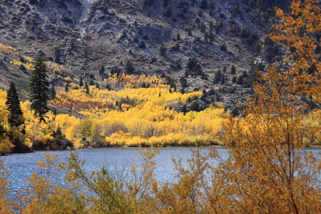 Autumn Colors Near a Lake California Stock Photo - 8486778