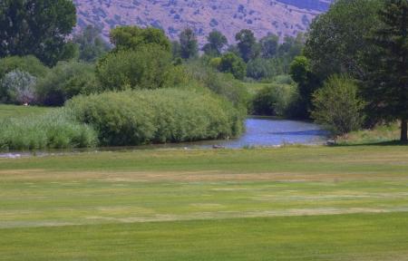 Green Golf Course Stockfoto