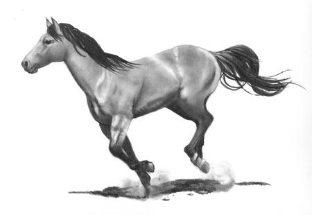 ギャロッピングの馬の鉛筆画