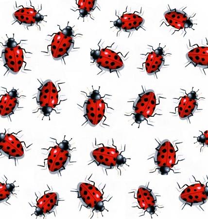 Painting of Ladybugs on White Background