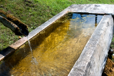 water source to fill in a wooden trough