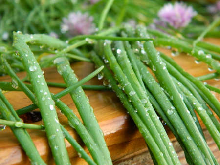 dewdrops: Dewdrops on a Chive plants Stock Photo