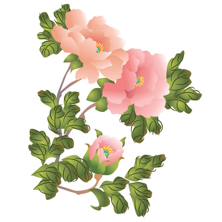 flower leaf: Peony. Chinese style