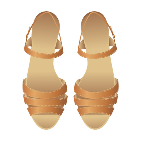 sandalia: sandalia  Vectores