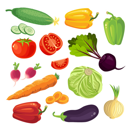 Conjunto de vehículos. Tomate, pepino, rábanos, zanahorias, pimientos, cebolla, berenjena. Las zanahorias en rodajas, rodajas de tomate. Col y remolacha.