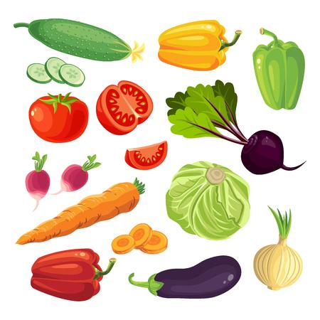 zanahoria: Conjunto de vehículos. Tomate, pepino, rábanos, zanahorias, pimientos, cebolla, berenjena. Las zanahorias en rodajas, rodajas de tomate. Col y remolacha.