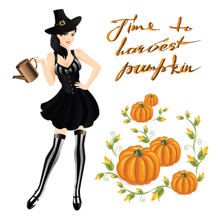 harvests: Woman in witch costume for halloween. Harvests pumpkin. Smoky Eye makeup. Woman in striped stockings, corset, black skirt and old cap with belt
