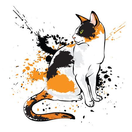 oriental white cat: Oriental cat on white background with paint splash. Vector Ink splash on white background