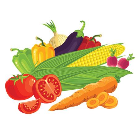 husks: Set of vegetables. Tomato, radishes, carrots, peppers, onions, eggplant. Sliced carrots, sliced tomato. Corn on the cob with husks. Illustration