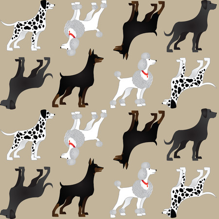 breeds: Pattern with different breeds of dogs on color background