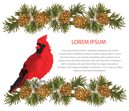 fir cone: Merry christmas or new year card. Garland with fir cone line on white background. Cardinal bird on fir tree