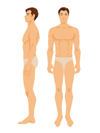 Vector illustration of young man in underwear isolated on white background. Various turns mans figure. Front view and side view.