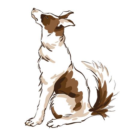 Vector hand drawn illustration of cute dog