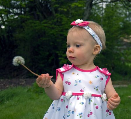 This cute little 1 year old girl is looking at a dandelion seed head she's never seen before.