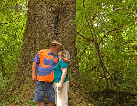 This middle aged Caucasian couple are sharing a cute kiss in front on a massive ancient cedar tree in a rain forest. Stock Photo - 5021689