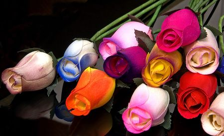 These colorful roses are handmade out of wood and are set on a black background.