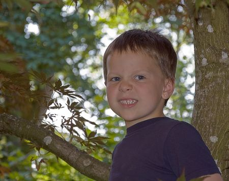 This Caucasian 5 year old boy in a tree has a facial expression like hes growling or frustrated. photo