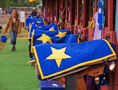 animal related: This shot features a row of saddles covered with blue blankets and a yellow star covering.