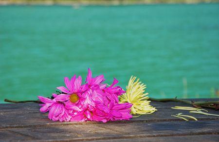 wilting: Estas flores brillantes de color magenta y amarillo son marchitamiento como se sentaron en una mesa de picnic de madera en un resort con el precioso agua turquesa en segundo plano. Foto de archivo