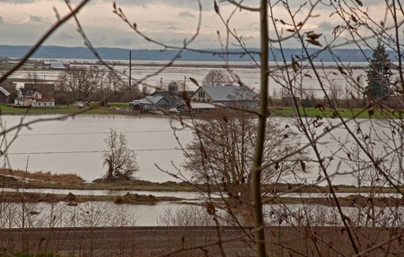 Flood waters from Stillaguamish river poured over farmlands recently.  The natural disaster took place December 14, 2010 in Stanwood, Wa.
