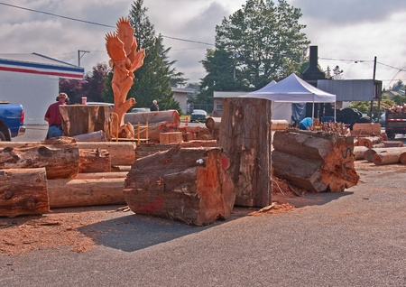 This stock image has many very large cut timber logs, mostly cedar that have been logged and prepped for a chainsaw cutting competition held on July 2, 2010 in Sedro Woolley, Washington.