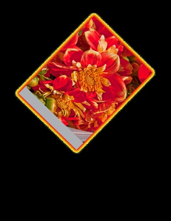 This is a brilliant orange dalia flower with a fire border on black, with room for custom text.