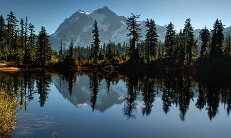 This landscape photo is of Picture Lake at Heather Meadows on Mt. Baker Washington in autumn.   Breath taking mountain is reflected off the water of the lake and fall foliage surrounds the edges.  Located in peaceful Baker National Forest in Whatcom Count 版權商用圖片